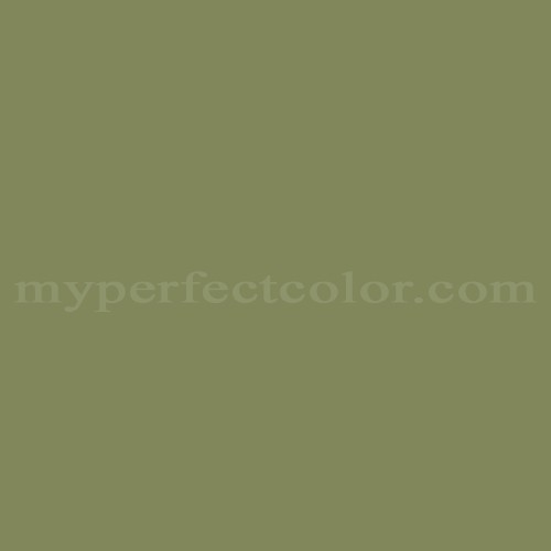 Color Match Of Olympic C68 5 Moss Point Green