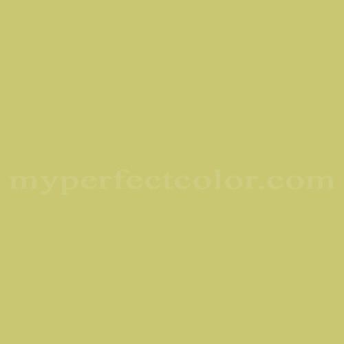 Color Match Of Pantone 13 0532 Tpx Celery Green