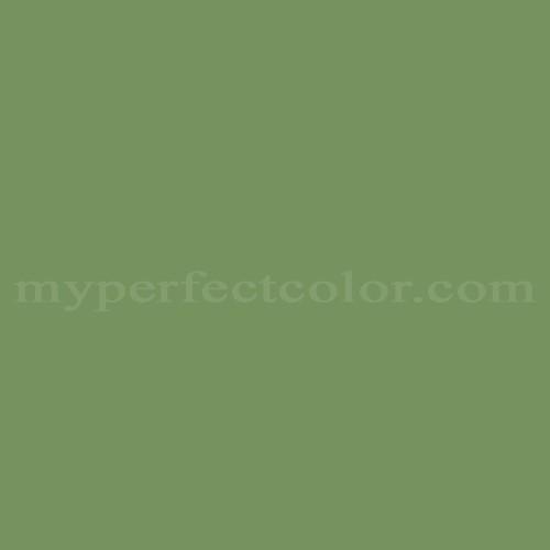 Match of Para Paints™ P5033-62 Indoor Foliage *