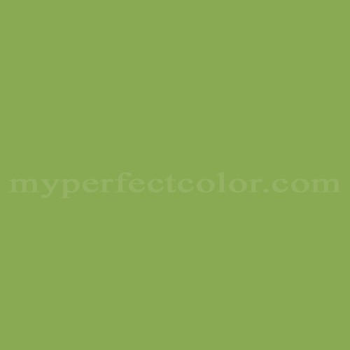 Match of Para Paints™ P5041-82D Clean Green *