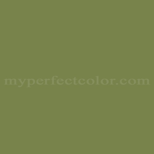 Match of Para Paints™ P5043-85 First Date *