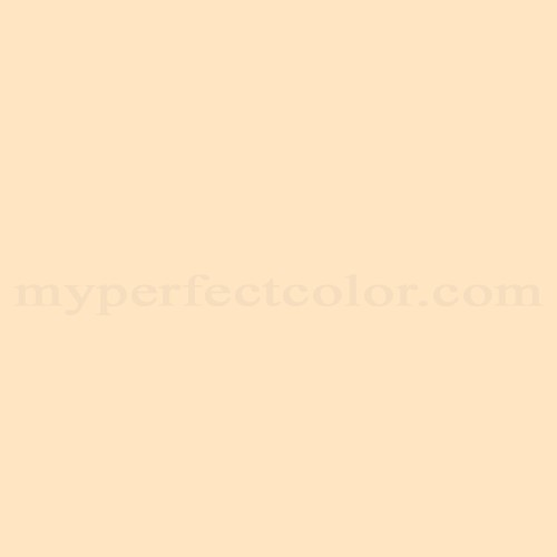 Match of Para Paints™ P5064-34 Breakfast Quiche *