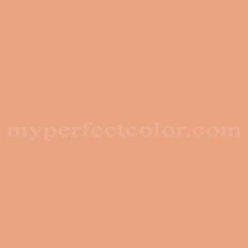 Match of Para Paints™ P5071-51 Fall Focus *