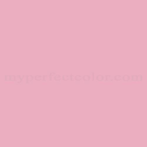 Match of Para Paints™ P5088-41 Broadway Pink *