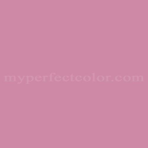 Match of Para Paints™ P5090-42 Seduction *