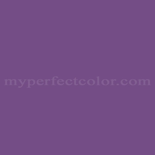 Match of Para Paints™ P5096-73 Dark Orchid *