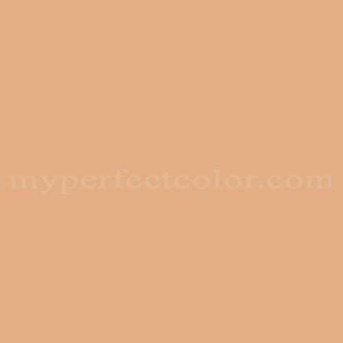 Match of Para Paints™ P5125-41 Canvas Case *