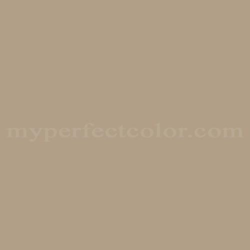 Match of Para Paints™ P5224-51 Tiger Safari *
