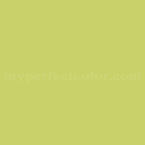 Match of Pittsburgh Paints™ 3372 Lemon Lime *