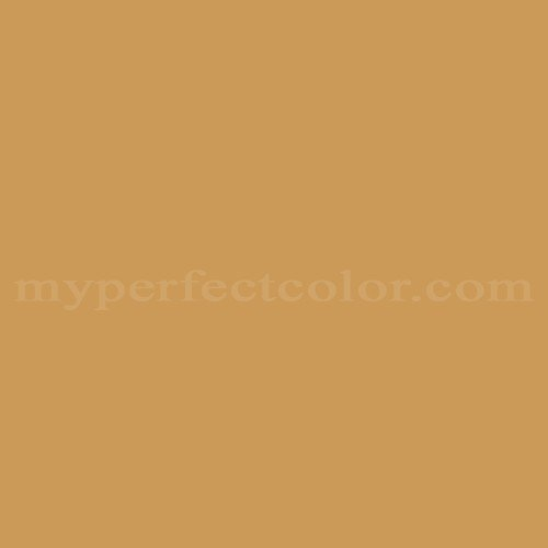Match of Pittsburgh Paints™ 4276 Tiger's Eye *