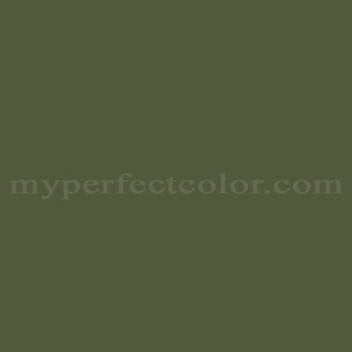 Color Match Of Dutch Boy Dc043 Roasted Asparagus