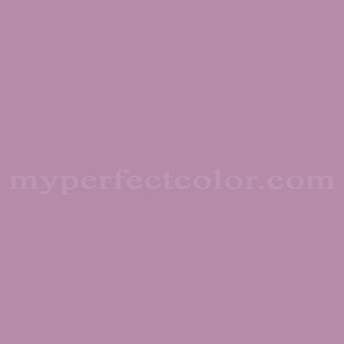 Match of Dutch Boy™ P019 Violet Style *