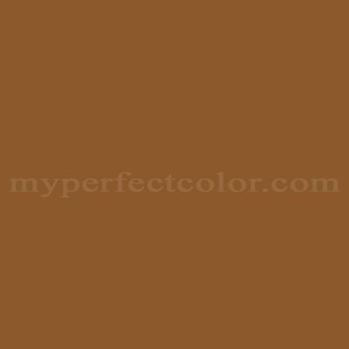 Benjamin Moore™ CSP-1080 mexican hot chocolate