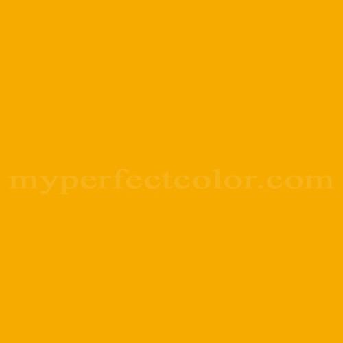 Pantone Pms 124 C Myperfectcolor