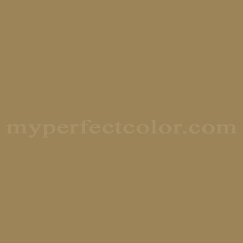 Match of Para Paints™ P5117-62 By George You've Got It *