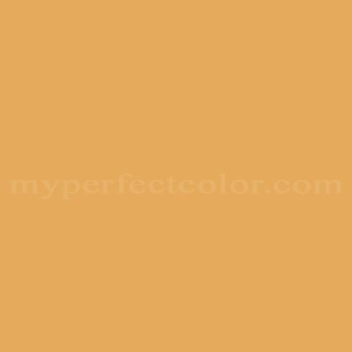Match of Premier Paints™ T99-6 Fool's Gold *