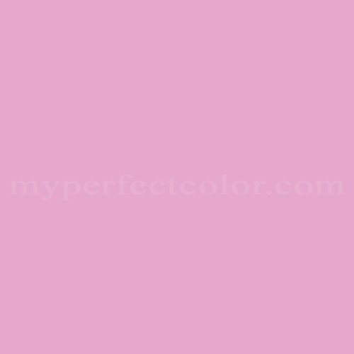 Match of Richard's Paint™ 2005-T Candytuft *