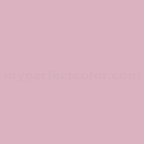 Match of Richard's Paint™ 2033-T Baby Rose *
