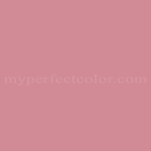 Match of Richard's Paint™ 2065-D Pepto *
