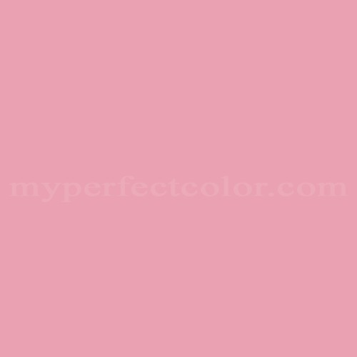 Match of Richard's Paint™ 2085-T Toe Shoe *