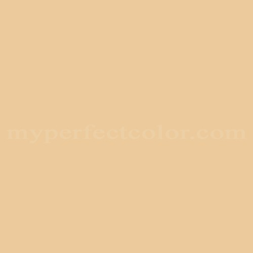 Match of Richard's Paint™ 2374-T Pale Amber *