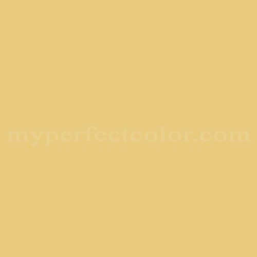 Match of Richard's Paint™ 2485-D Gold Feather *
