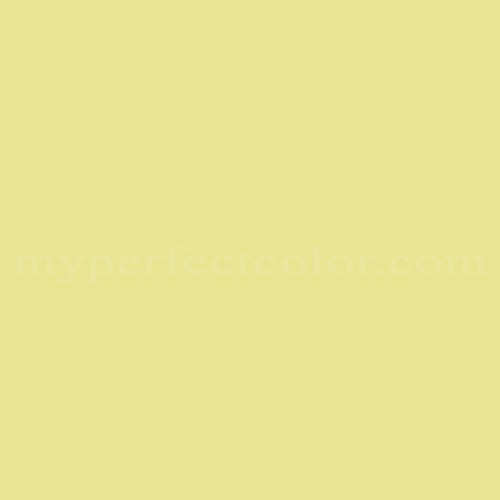 Match of Richard's Paint™ 2564-T Citrus Shade *
