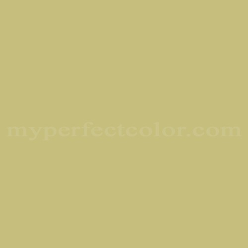 Match of Richard's Paint™ 2585-D Mayan Moss *