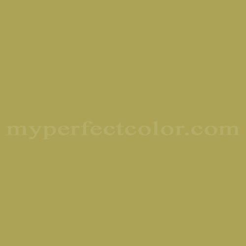 Match of Richard's Paint™ 2587-A Bulrush *