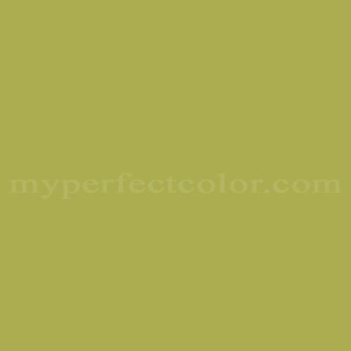 Match of Richard's Paint™ 2596-A Celeriac *
