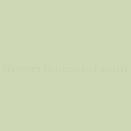 Match of Richard's Paint™ 2644-P Pole Cactus *