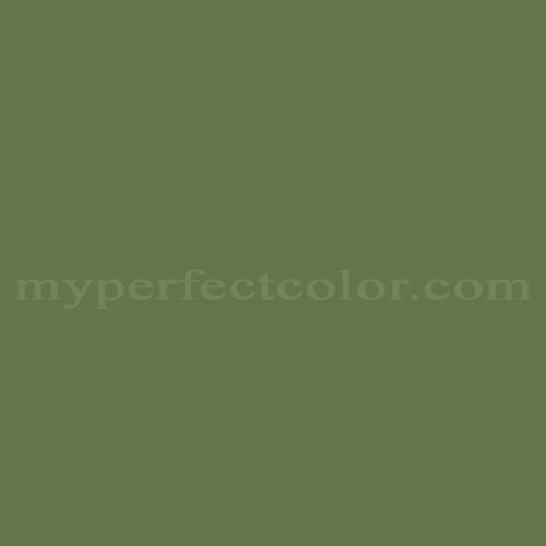 Match of Richard's Paint™ 2648-A Morning Green *