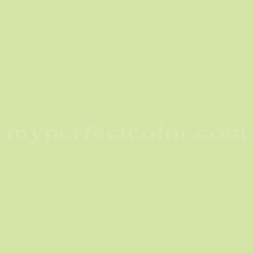 Match of Richard's Paint™ 2663-T Limeade *