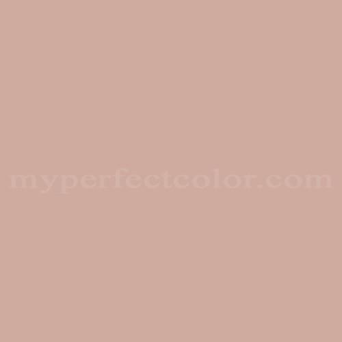 Match of Richard's Paint™ 3204-P Brunnera *