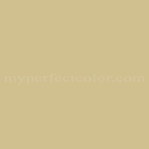 Match of Richard's Paint™ 3434-T Olive Oil *