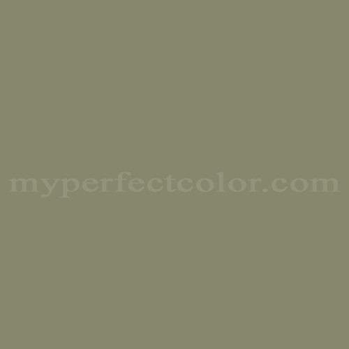 Match of Richard's Paint™ 3507-D Pamona *
