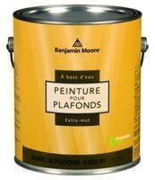 Benjamin Moore™ 508 Waterborne Ceiling Paint Ultra Flat Finish Paint