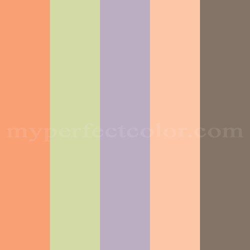 Benjamin Moore Summer Peach Tree / 088 / #ffcba9 Hex Color